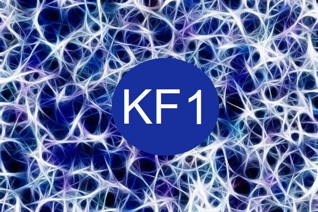 Kinésiologie fractale